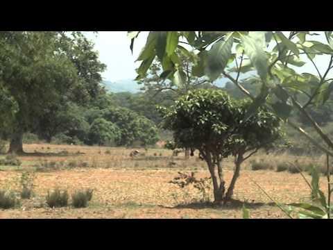 Odisha Visit - Part-1