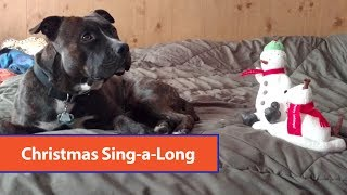 Dog Sings With Toy Snowman