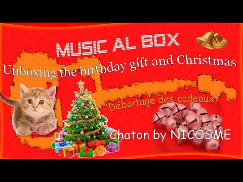 Déboitage des cadeaux (Unboxing the birthday gift and Christmas)
