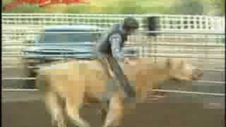 Bull Riding in Fort Pierre, South Dakota