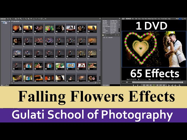 09 Falling Flowers, Crackers | Effects For Edius 7,8,9 Software |  Alpha Effects |  ( 65 Effects )