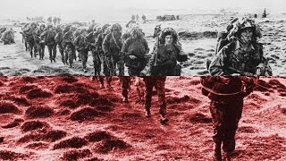 The Falklands War, 1982 - Professor Vernon Bogdanor