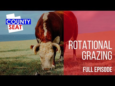 Rotational Grazing   The County Seat