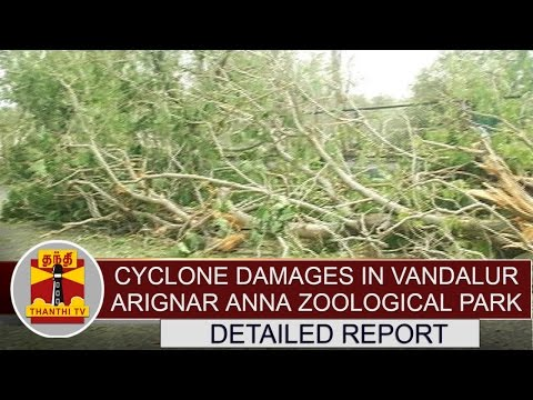 Detailed report about cyclone damages in Vandalur Arignar Anna Zoological Park