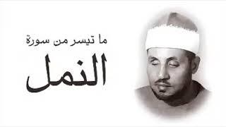 الشيخ ( محمد عمران ) و ما تيسر له من السورة الكريمة ( النمل )