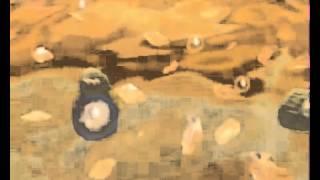 Ultrasonic Cavitation Explained - Cavi Lipo from Cavi Spa NY Thumbnail