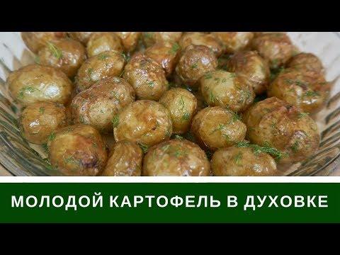 Как запечь молодой картофель в духовке