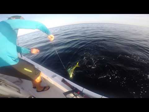 fishing offshore stuart florida