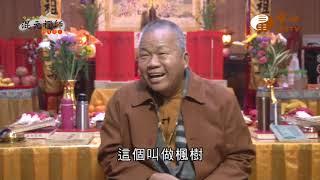 【混元禪師隨緣開示175】| WXTV唯心電視台