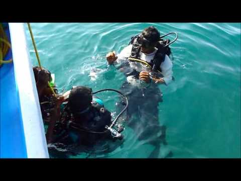 Goa Scuba Dive.wmv