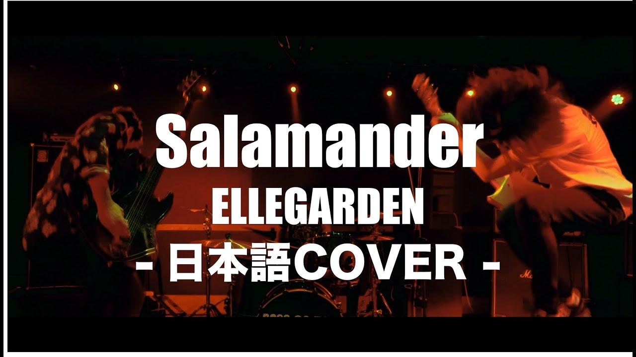 ELLEGARDEN - Salamanderを日本語にしてみた!