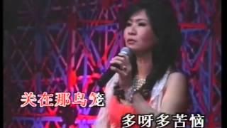 Wo shi yi zhi hua mei niao,Karaoke,in the ltyle of 陈文君, Chen Wen Jun