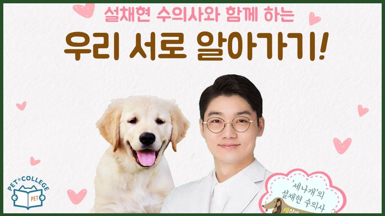 설채현 수의사의 동물행동학 강의 no.7/8 - 강아지와의 산책 - 6차공개강의