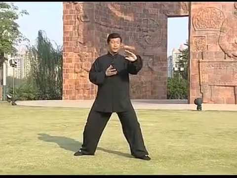 Beijing Chen style Tai Chi Tuishou application