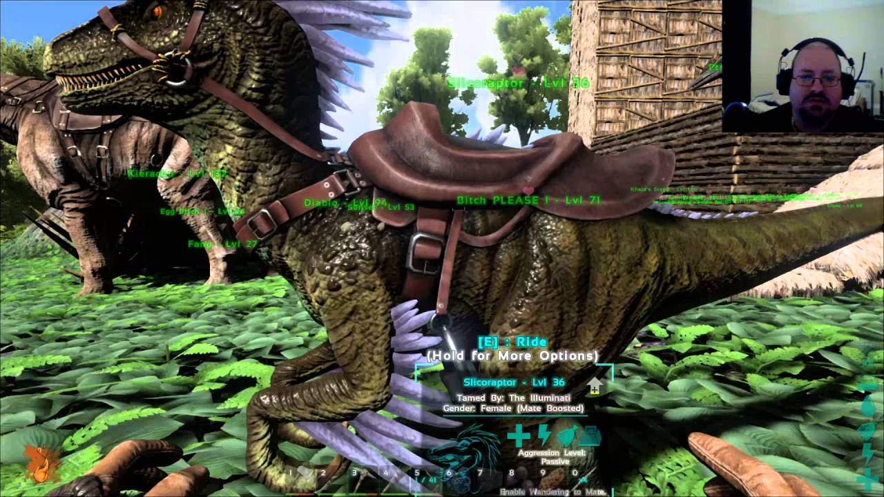Ark Survival Evolved Building These Stone Walls Youtube