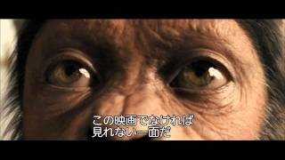 人間が高度な知能を持つ猿に支配される前代未聞の世界観と、衝撃的なラ...