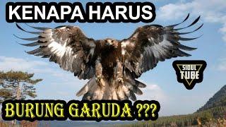 Mengapa Garuda Dijadikan Lambang Negara Indonesia ???