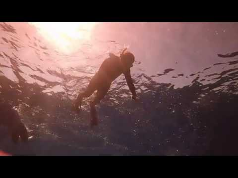 Columbia and Palancar Snorkeling Adventure