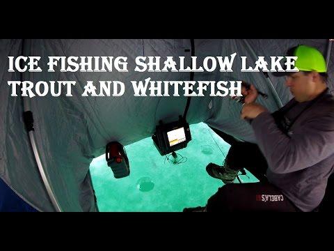 Ice fishing Shallow Lake Trout and Whitefish - Lake simcoe