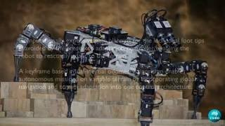 Autonomous Navigation of Hexapod Robots with Vision-based Controller Adaptation - ICRA2017