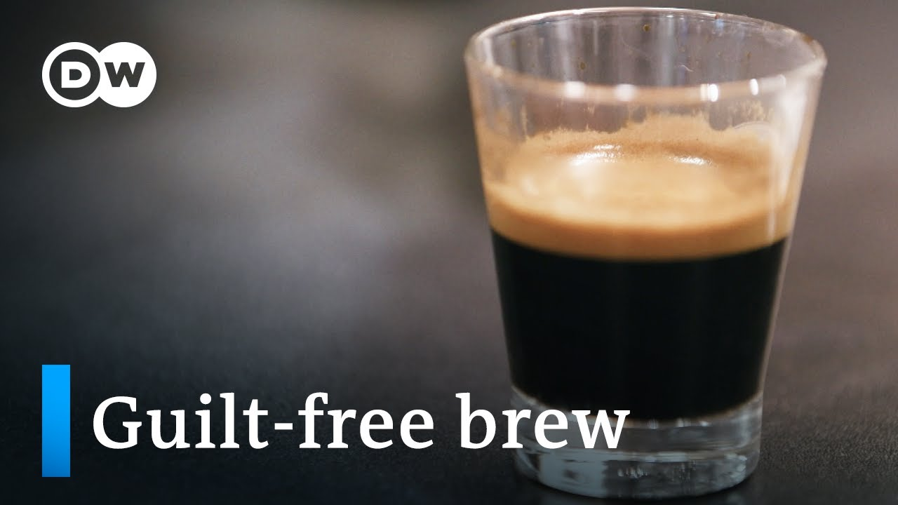 The perfect coffee – fair trade and sustainable   DW Documentary