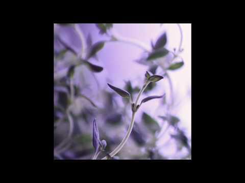 Ahmad Jamal - The Love Is Lost