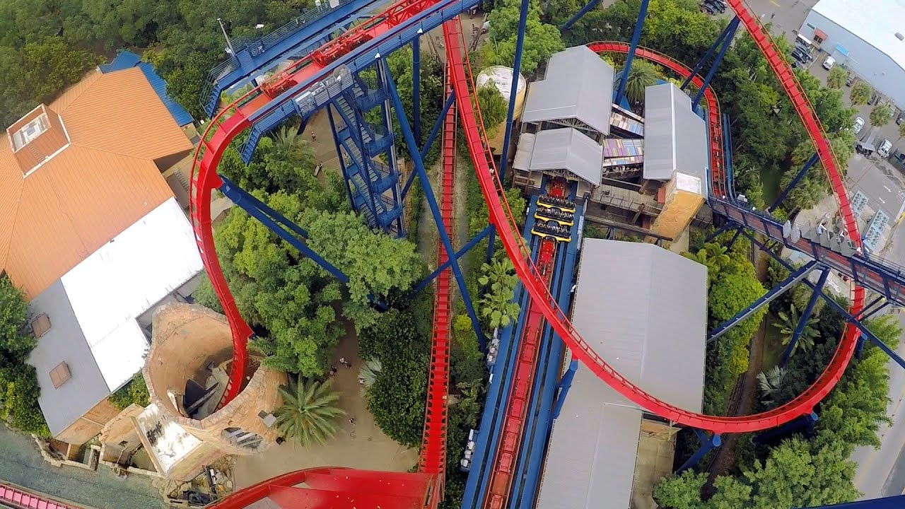 Sheikra Busch Gardens Images Galleries With A Bite