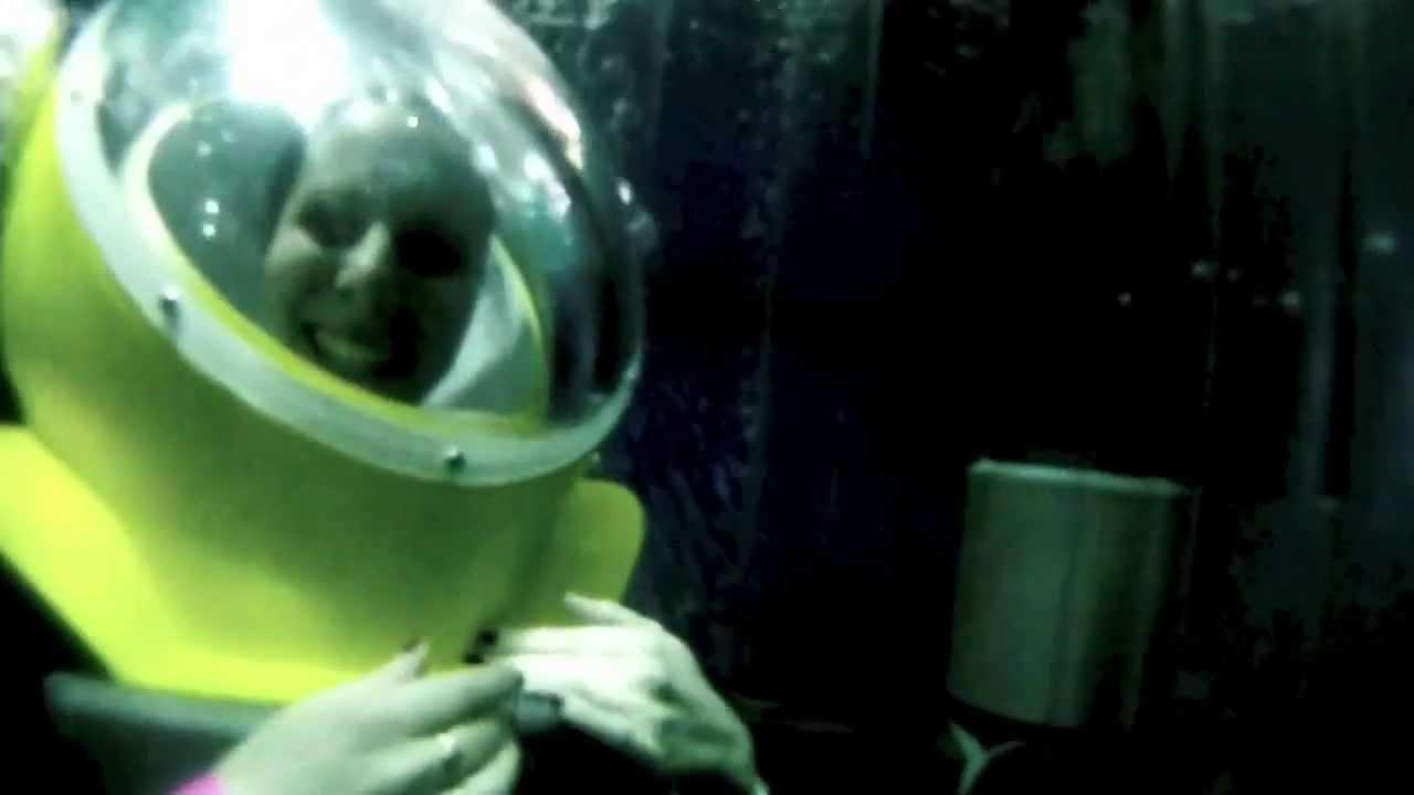Marineland rencontre avec les requins [PUNIQRANDLINE-(au-dating-names.txt) 24