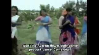 Aavaram Poo Meni   Tamil Song