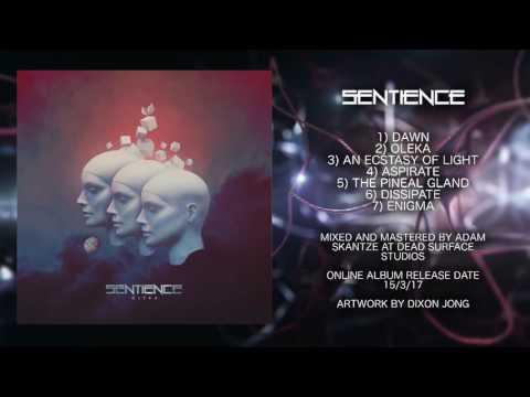 Sentience - Oleka