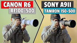 Canon R6 & RF100-500 Vs So…