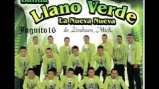 Banda Llano Verde (Sones Michoacanos) ::Disco Nuevo::2011::
