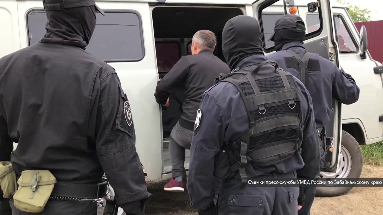 ОПГ сутенеров во главе с женщиной задержали в Чите