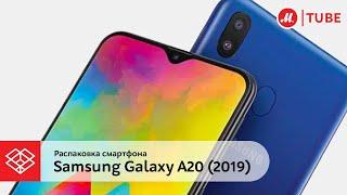 Распаковка смартфона Samsung Galaxy A20 (2019)