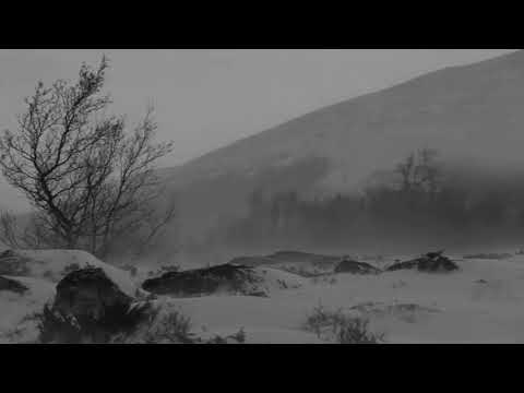 Arve Henriksen - Hibernal