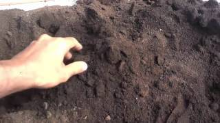 How To Use Compost | Organic Gardening Compost | Compost And Soil (Urdu/Hindi)
