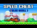 [TAS] New Super Mario Bros DS Speed Cheat Speedrun (Blue Shell Luigi)