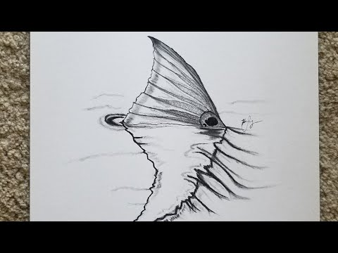 How To Draw A Redfish Tail Speed Drawing