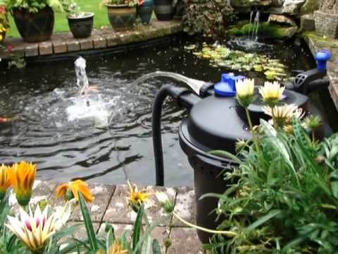 Pressurised pond filter set up pfc 5000 all pond Setting up fish pond