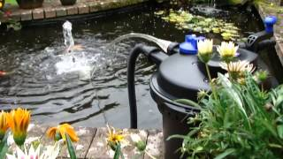 Pressurised Pond Filter Set Up (CPF-5000) - All Pond Solutions