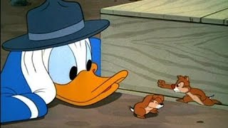 Donald Duck and Chip 'n' Dale Full Episodes Compilation HD