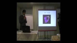 Elementi di teoria del caos e Semeiotica Biofisica Quantistica. seconda parte. di Simone Caramel
