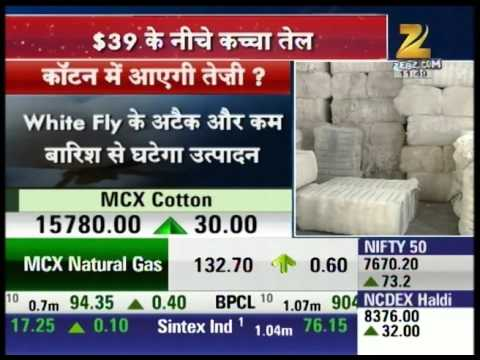 Cotton Stocks : Mandi Live