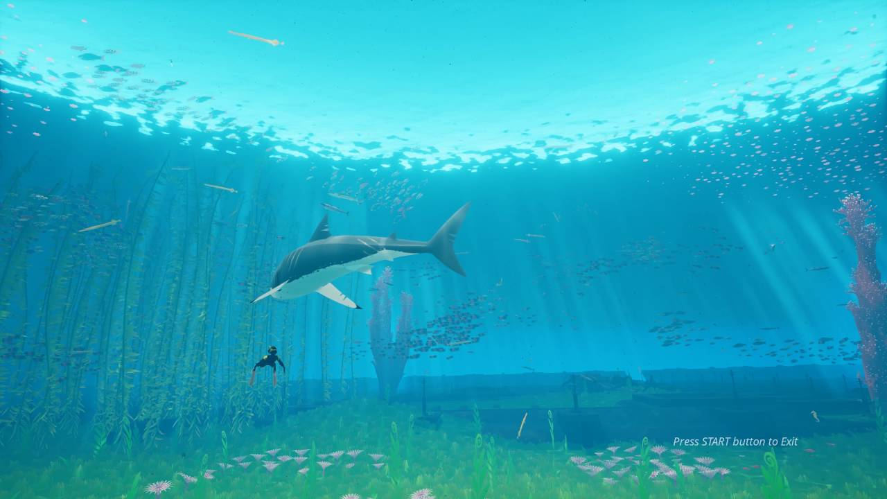 Abzu Under Water Paradise Live Wallpaper 4k Youtube
