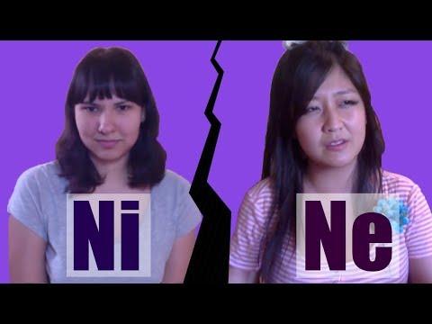 Ni Ne Misunderstandings - INTJ & INFP Discuss