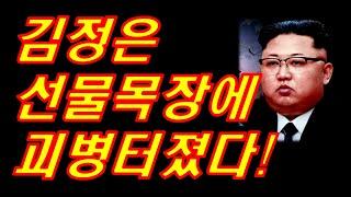 (재업)김정은선물목장에 괴병이터졌다!