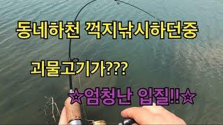 [루어P]꺽지낚시중괴 물손님고기가??!! 대박손맛 부산루어낚시