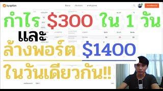 IQ Option แชร์ประสบการณ์ ทำกำไร $300 ใน 1 วัน และล้างพอร์ต $1400 ในวันเดียวกัน!