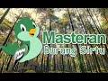 Ampuh Suara Pikat Burung Cipow Atau Bikin Sirtu Gacor  Mp3 - Mp4 Download