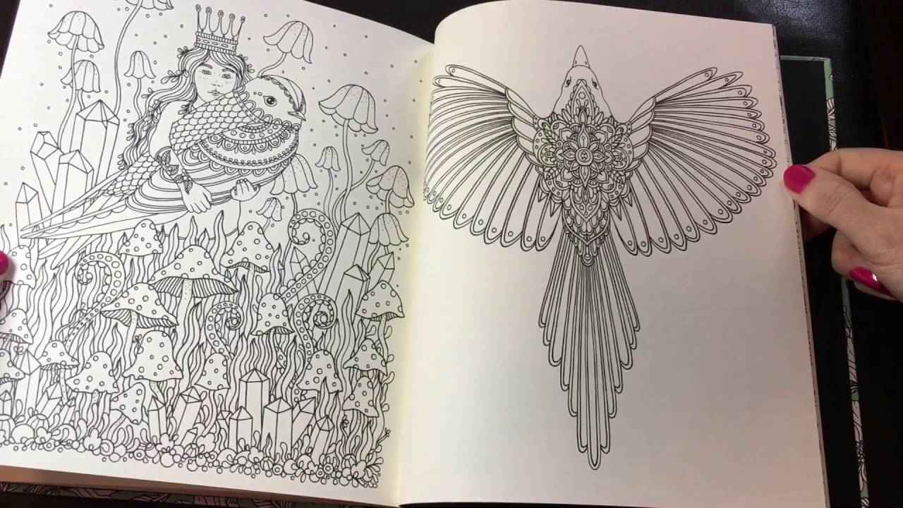 Daydreams by Hanna Karlzon adult coloring book review ...